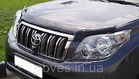 Дефлектор капота (мухобойка) VW Jetta V с 2005–2010 г.в.
