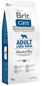 Копия Корм Brit Care Adult Large Breed Lamb & Rice для взрослых собак крупных пород с ягненком и рисом, 12 кг