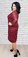 Нарядное платье большого размера 1590 р.58-62
