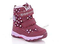 Новая коллекция зимней обуви оптом 2018. Детская зимняя обувь бренда Y.Top  для девочек b8f6a8a25eb