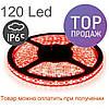 Светодиодная лента 3528-120 IP65, герметичная, красная