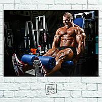 Постер Бодибилдер, жим ногами. Размер 60x42см (A2). Глянцевая бумага