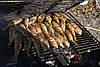 Барабулька (султанка) черноморская, средне-крупная 10-13см , фото 4