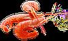 Креветки чорноморські середньо-великі солодкі 3.0 - 3.5 см, фото 6