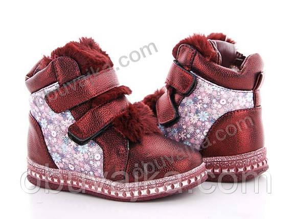 Зимняя обувь Зимние ботинки для девочек 2019 от фирмы GFB(27-32), фото 2