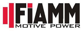 Зарядні пристрої для тягових батарей FIAMM