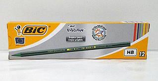 BIC  Пластіковий графітовий олівец Еволюшн НВ 12шт