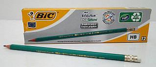 BIC  Пластіковий графітовий олівец НВ з ластиком уп.12шт*6