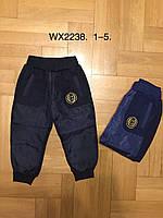 Спортивные брюки на меху для мальчиков оптом, F&D, 1-5 лет, арт. WX-2238, фото 1