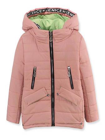 Детская демисезонная куртка на девочку, пудра, р.134, фото 2