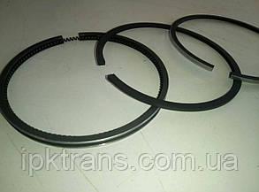 Кольца поршневые XINCHAI A490BPG