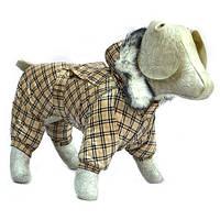 Комбінезон для собаки зимовий Мімоза, фото 1