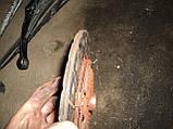 Диск щеплення нисан примэра п11 2.0 дизель, фото 4