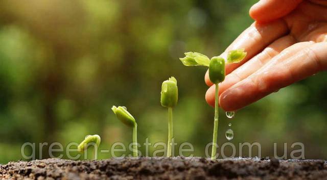 преимущества органического земледелия