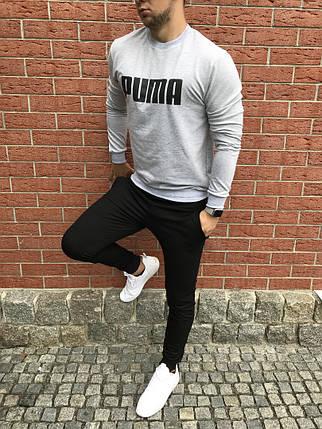 Спортивный осенний костюм grey/black топ реплика, фото 2