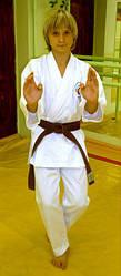 Пояс для кимоно коричневый MB-280Br
