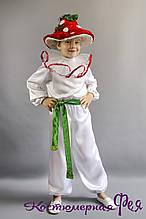 Грибок Мухомор, карнавальний костюм для хлопчика (код 90/6)