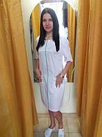 Медичне плаття коттон 23-26 МТ