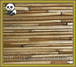 Натуральные обои Тростник крупный, бамбук /коричневый фон