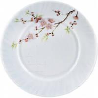 """Тарелка стеклокерам. 200мм 8"""" мелкая Sakura уп.6шт"""