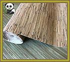 Натуральные обои Тростник мелкий, бамбук /светлый фон, фото 2