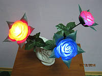 Светящиеся цветы.Светящиеся розы.