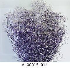 Стабилизированная гипсофила фиолетовая