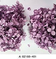 Стабилизированная гортензия фиолетовая, 401