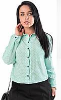 f5fa18732a8 Женская рубашка мятного цвета с длинным рукавом. Модель 19315. Размеры 50-56