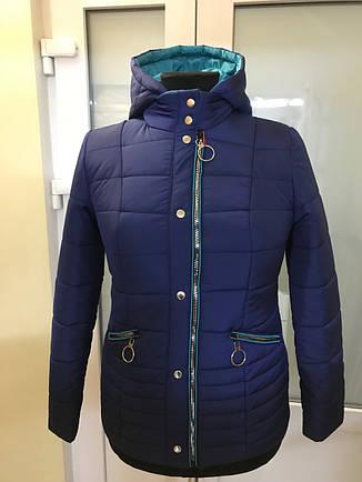 Демисезонная темно-синяя куртка 44-58 размер, фото 2
