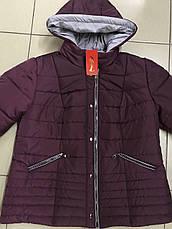 Демисезонная стильная куртка 44-58 размер, фото 3