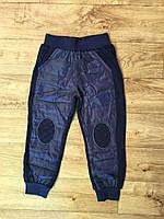 Спортивные брюки на синтепоне для мальчиков оптом, F&D, 1-5 лет, арт. WX-2240, фото 2