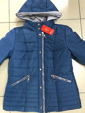 Демисезонная стильная куртка 44-58 размер, фото 2