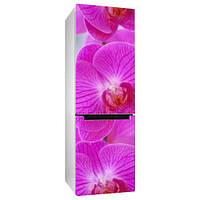 Вінілова наклейка на холодильник Орхідея 3 плівка самоклеюча глянцева з ламінуванням 650*2000 мм