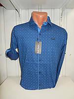 Рубашка мужская Paul Smith длинный рукав, стрейч, мелкий узор 01.09.2018 №1 001\ купить рубашку