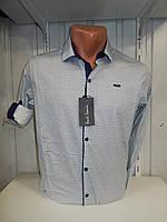 Рубашка мужская Paul Smith длинный рукав, стрейч, мелкий узор 01.09.2018 №3 001\ купить рубашку