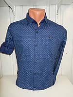 Рубашка мужская Paul Smith длинный рукав, стрейч, мелкий узор 01.09.2018 №4 001\ купить рубашку