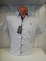 Рубашка мужская Paul Smith стрейч, мелкий узор 01.09.2018 №2 003\ купить рубашку