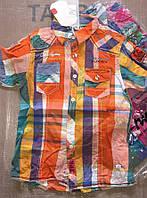 Рубашка  для мальчиков S&D оптом, 6-14 рр {есть:14 лет}