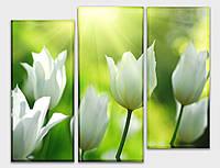 Картина модульная HolstArt Белые тюльпаны 2 90*120см 3 модуля арт.HAT-206