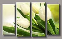 Картина модульная HolstArt Белые тюльпаны 61,5*98,5см 4 модуля арт.HAF-160