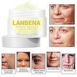 Антивозрастной крем для лица на основе пептидного комплекса Peptide Wrinkle Facial Cream, фото 6