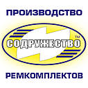 Прокладка центробежного масляного фильтра кожкартон (TEXON), КАМАЗ, фото 2