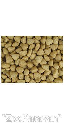 Josera Josicat. Полноценный корм для взрослых котов всех пород с телятиной 18  кг, фото 2