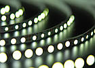 Светодиодная лента Foton SMD 3528 (120 LED/m) Slim IP20 Premium, фото 5
