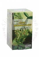 Cissus quadrangularis для лечения варикоза и геморроя