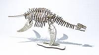 """3D Пазл динозавр """"Плезиозавр"""", фото 1"""
