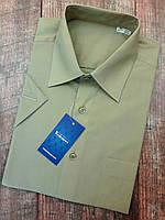 Мужская рубашка цвета Хаки с коротким рукавом
