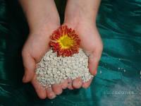 Цеолит для цветов 1,5 кг.