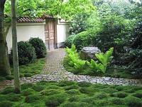 Декоративный натуральный камень для ландшафтного дизайну.